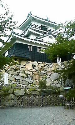 浜松城だー